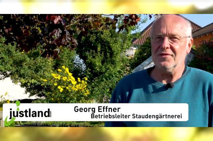 gaertnerei.justland.de justland GmbH Stauden- und Gemüsegärtnerei