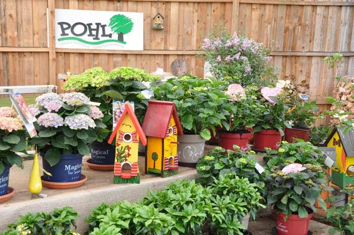 pohl-galabau.de Pohl & Schneider Garten- und Landschaftsbau GmbH