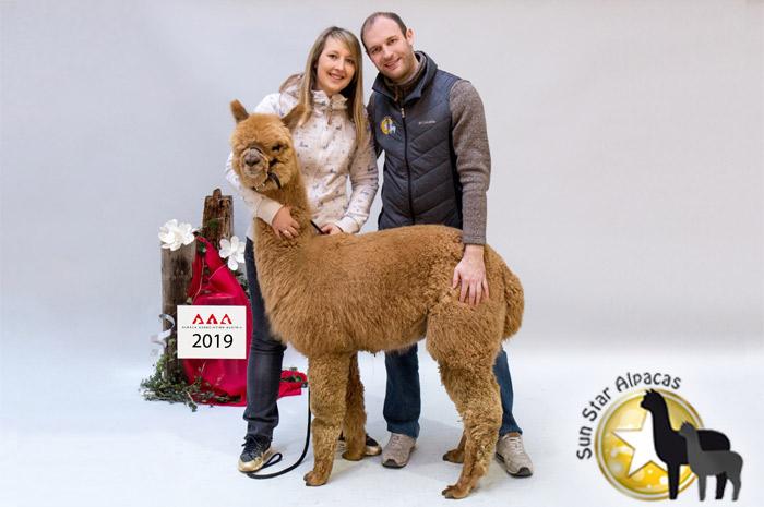 sun-star-alpacas.de Sun Star Alpacas GbR Die Alpaka Farm in Bayern.